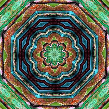 Barbara Drake - Zen Kaleidoscope