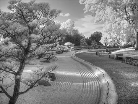 Zen Path by Jane Linders