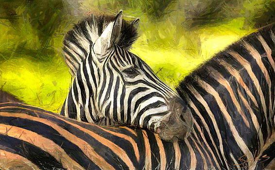 Zig Zag Zebra by Francisco Sanchez Salas