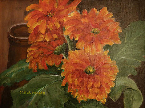Zinnias In Bloom by Carol L Miller