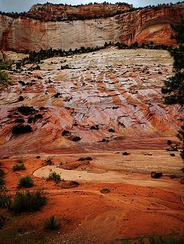 Zion 1 by Keith Zudell