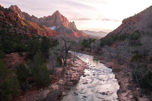 Zion Watchman by Anthony J Wright