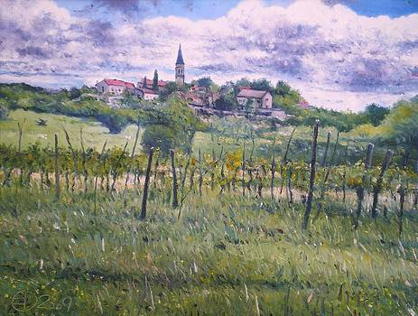 Zrenj Croatia by Enver Larney