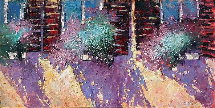 Anastasija Kraineva -    Light and Shadow