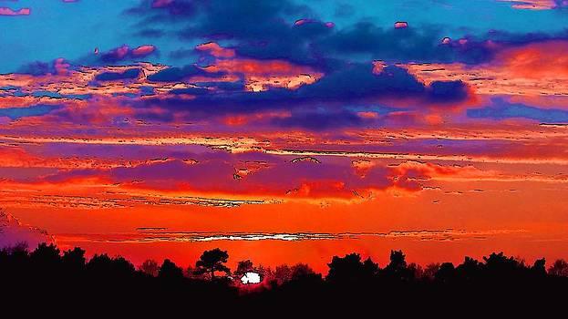 A Colorful Sun  by Viveka Singh