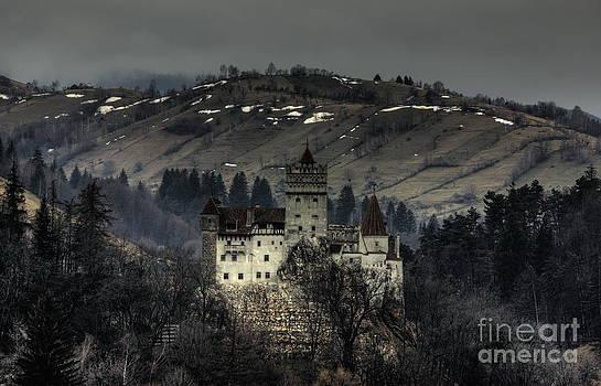 Dracula's Castle by Bela Torok