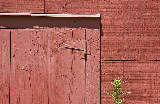 David Letts -  Faded Red Wood Barn Wall