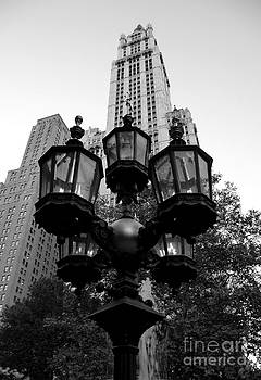 Anna  Duyunova -  Mood of New York