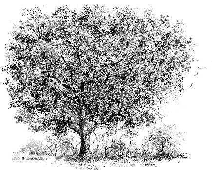 Jim Hubbard -  Oak