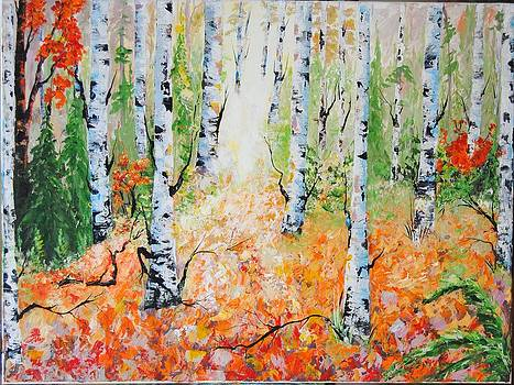 The  Birches Of Nova Scotia by Anne Marie Spears