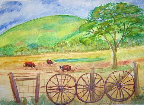 The Cattle Gap by Belinda Lawson