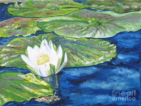 Water Lily Blooming by Laurel Anderson-McCallum