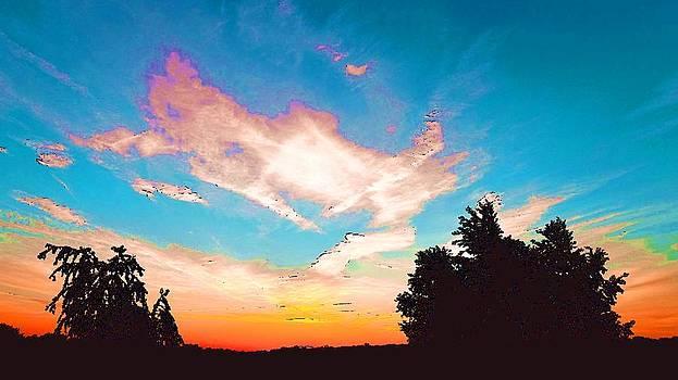 A Colorful Sky by Viveka Singh