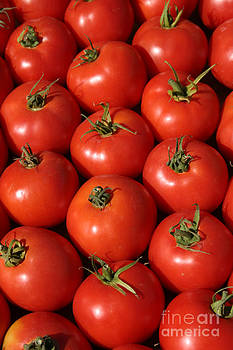 Michael Ledray - a trip through the farmers market with red tomatoes
