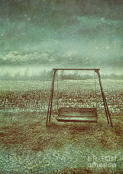 Sandra Cunningham - Abandoned  swing in first snow storm of winter