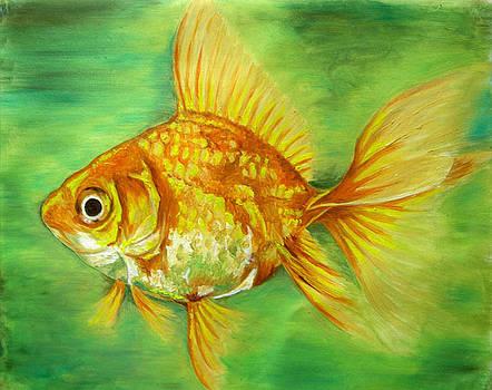 Angel Fish by Tomy Joseph