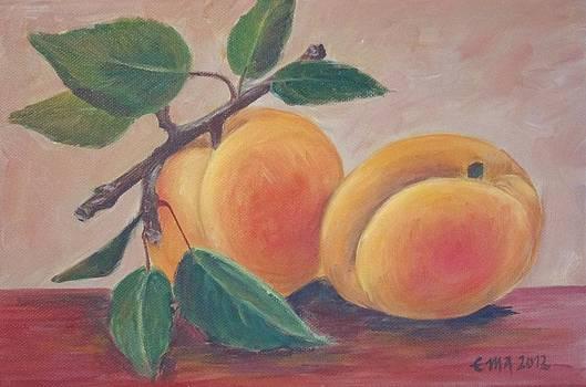 Apricot by Ema Dolinar Lovsin