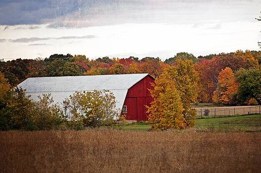 Autumn Barn by Cheryl Cencich