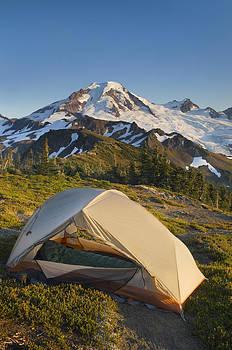 Backcountry Campsite On Skyline Divide by Alan Majchrowicz
