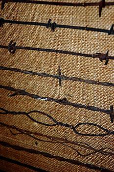 LeeAnn McLaneGoetz McLaneGoetzStudioLLCcom - Barbed Wire