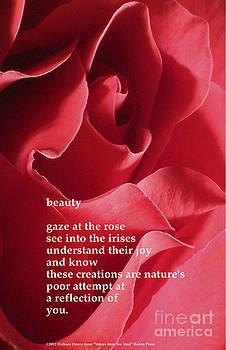 Beauty by Richard Donin