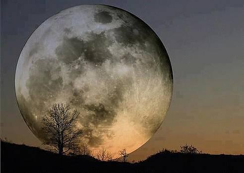 Big moon by Sunkies Fang