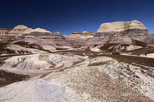 Adam Jewell - Blue Mesa Landscape
