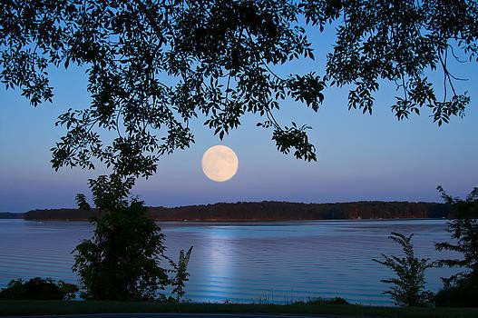 Randall Branham - Blue Moon of August