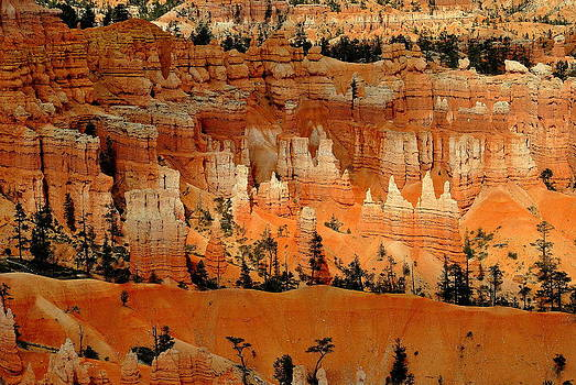 Bryce Canyon National Park by Eleu  Tabares
