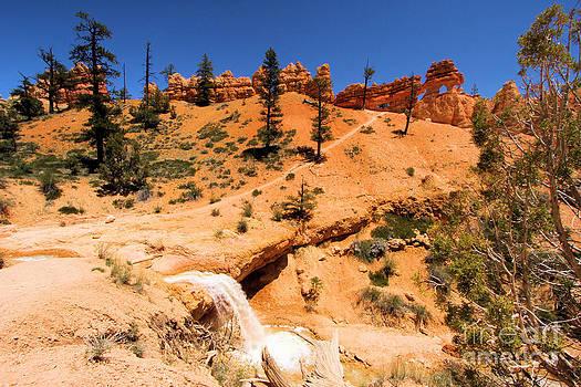 Adam Jewell - Bryce Water Canyon