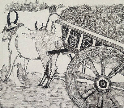 Bullock Cart by Hema Rana