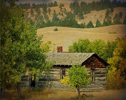 Terry Eve Tanner - Cabin at Pine Ridge