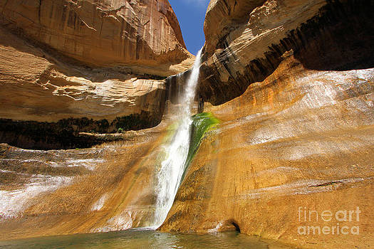 Adam Jewell - Calf Creek Falls
