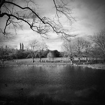 Central Park by Eli Maier