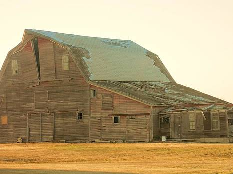Charming Old Barn by Trish Pitts