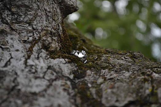 Claddagh Ring by Jennifer Kelly