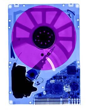 Ted Kinsman - Computer Hard Drive