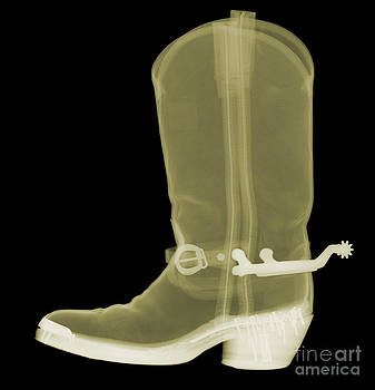 Ted Kinsman - Cowboy Boot X-ray