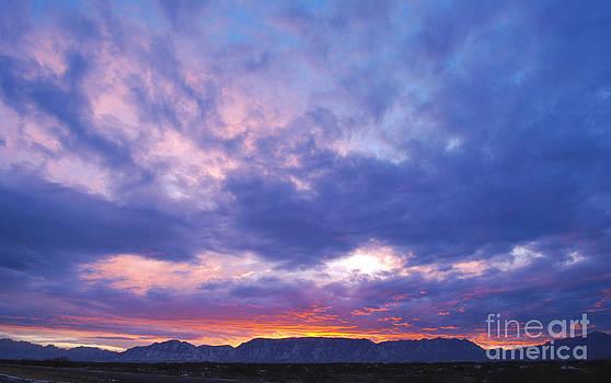 Desert Sunset by Anna Crowder