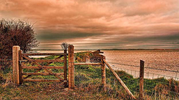 Discovery by Kim Shatwell-Irishphotographer