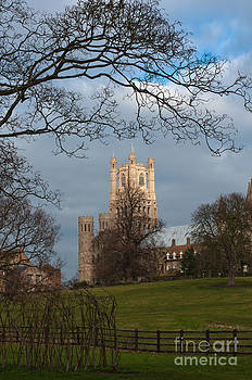 Ely Cathedral  by Andrew  Michael