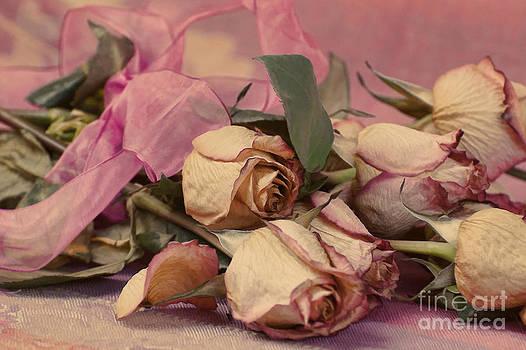 Faded Roses by Noel Zia Lee