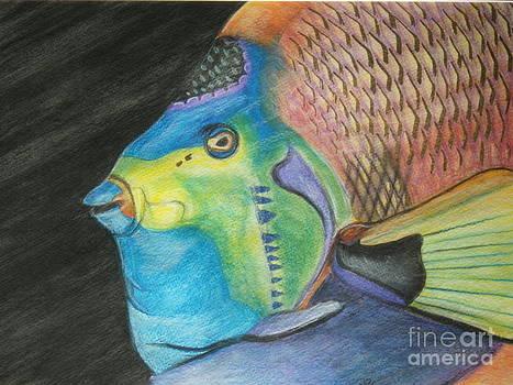 Fancy Fish by Sharon Wilkens