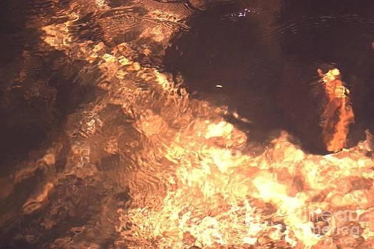 Fired Water  by Virginia Pakkala