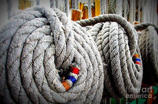 Fleet Week - Ship's Ropes by Maria Scarfone