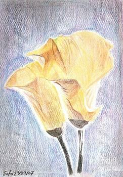 Flowers by Safa Al-Rubaye