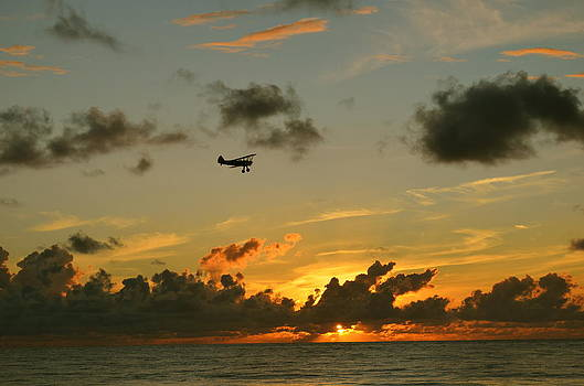 Flying Into The Sunset by Susan McNamara