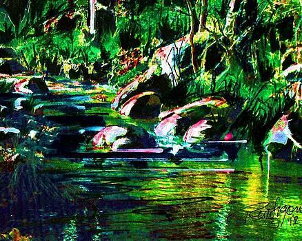 Fossil Creek by Wayne  Ligon