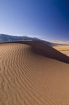 Great Dunes by Daniel Cummins