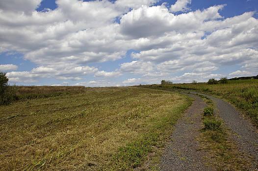 David Letts - Griggstown Native Grassland Preserve